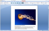 Скриншот №2 к программе Microsoft Word